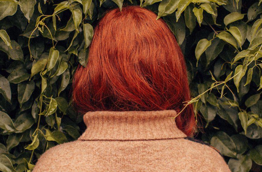 hide-bushes